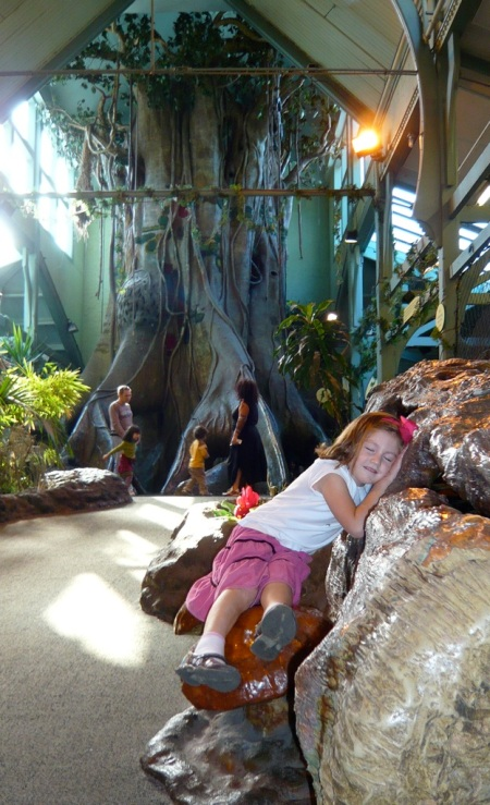 zoo playhouse