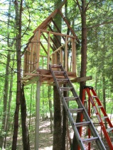 treehouse before